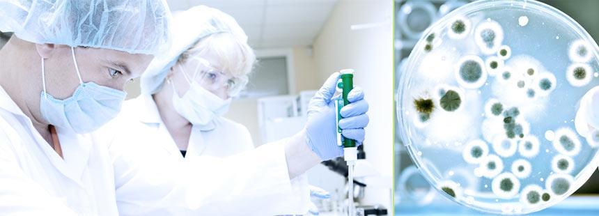 Хіміко-мікробіологічна лабораторія